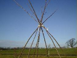 living willow wigwam