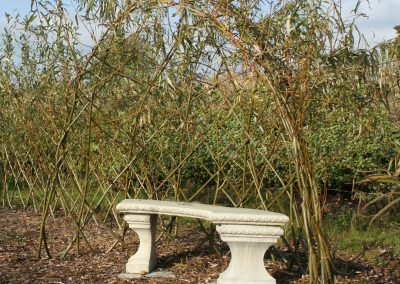 Living Willow Half Bower Kit WK111