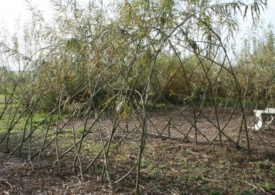 An extended version of our Living Willow Large Tunnel Kit WK122