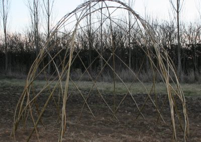 Living Willow Standard Dome Kit WK105