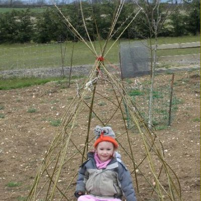 Small Living Willow Wigwam Kit WK101 at Willows Nursery
