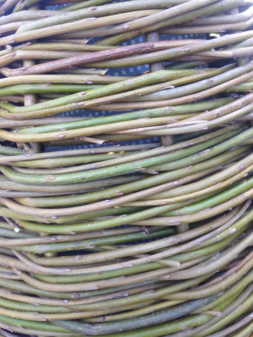 Weaving with 'dead' willow at Willows Nursery
