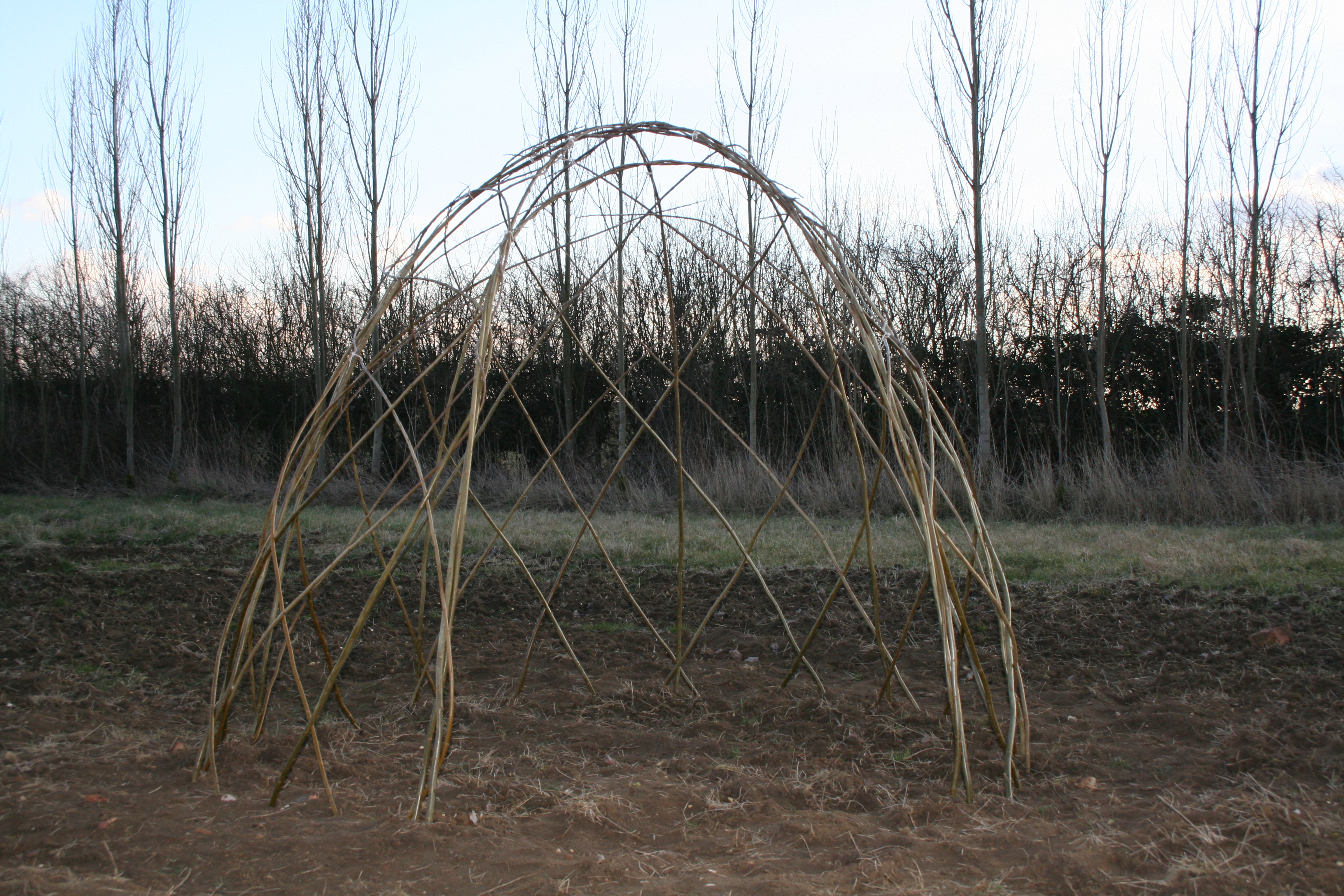 Living Willow Dome Kit