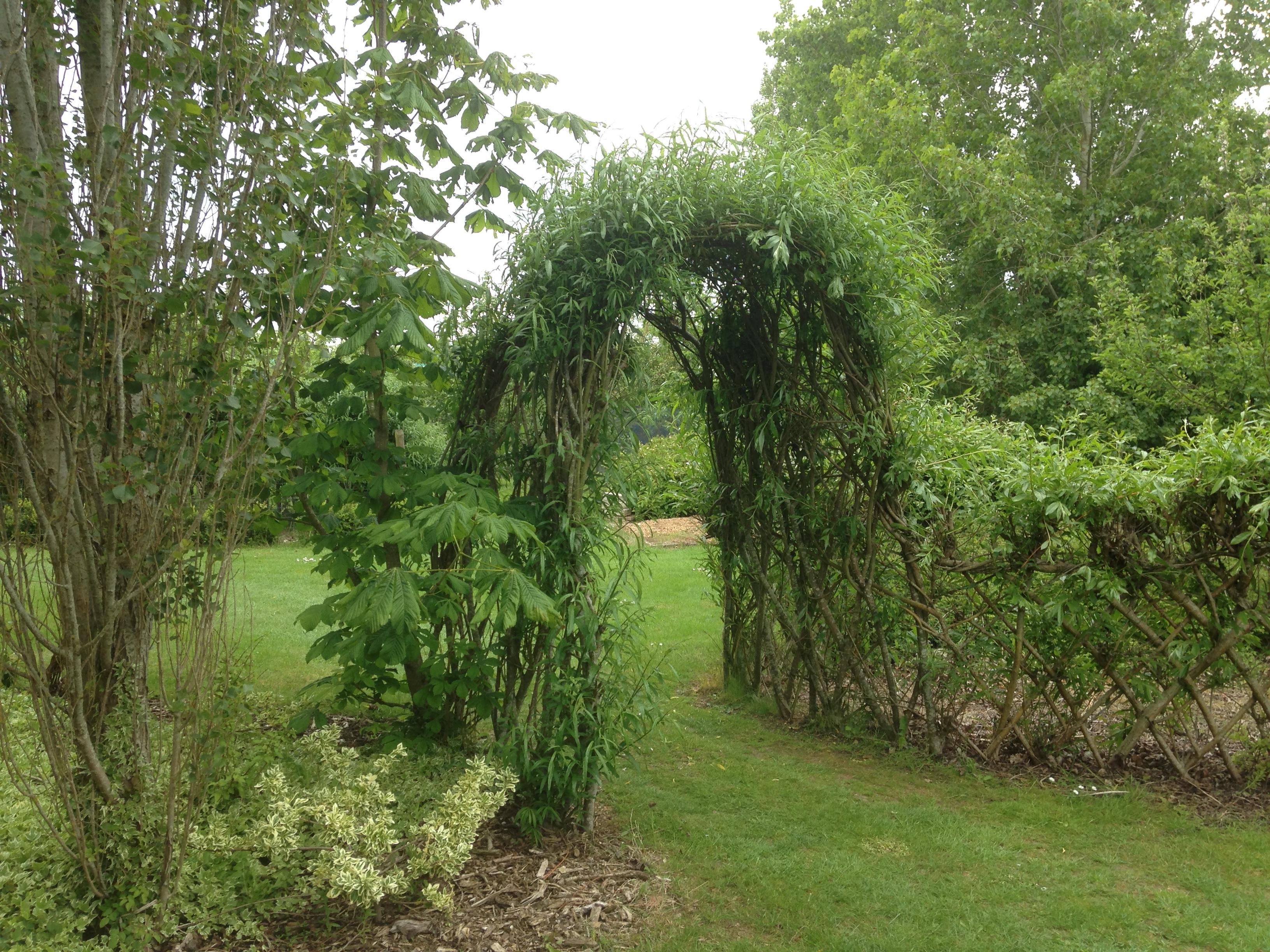 Bamboo Garden Screen Fence