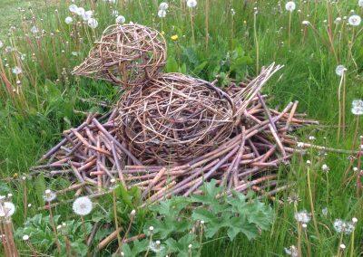Woven willow bird on its nest at Willows Nursery