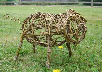 Woven willow pig at Willows Nursery