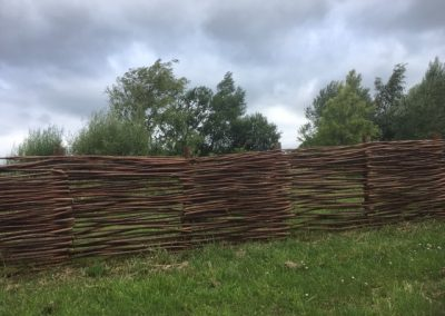 Woven willow fencing at Willows Nursery. Buy willow to make
