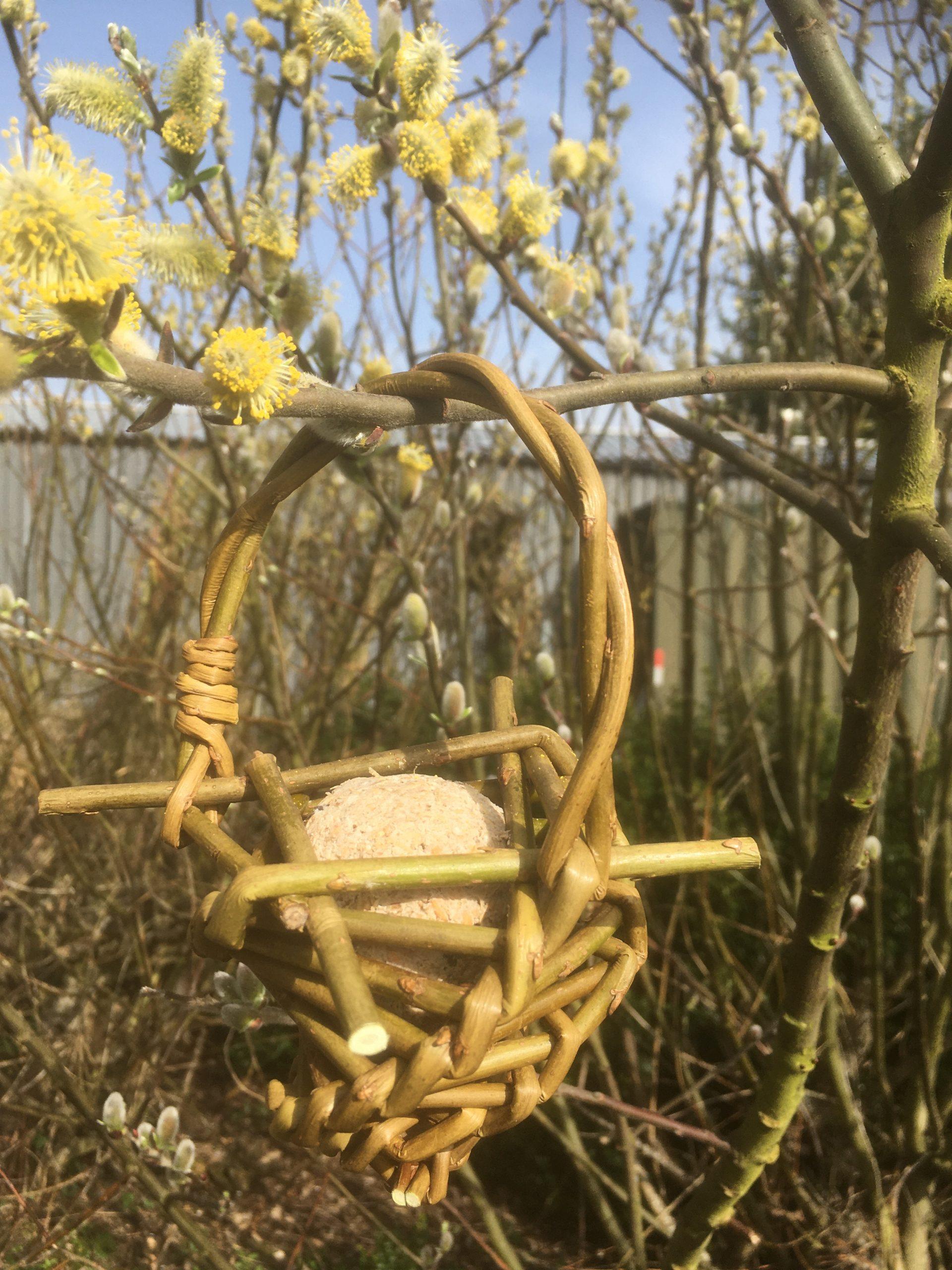 Willow fat ball bird feeder
