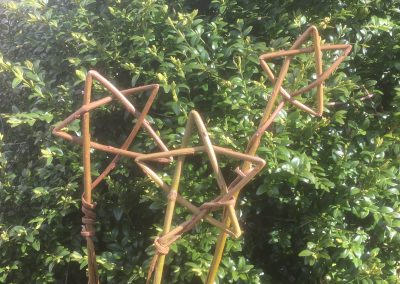 Willow Star. Made from a single willow whip at Willows Nursery. Buy willow to make.
